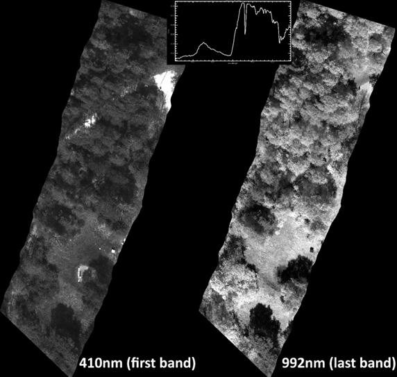 Image satellitaire